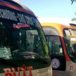 Nhân viên bán vé và lái xe Bus tại Nghệ An