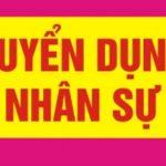 Công ty TNHH Tiếp vận và Vận tải Đại Việt tuyển Nhân viên văn phòng