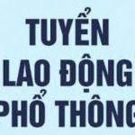 Công ty tnhh Mai Ninh Tuyển dụng công nhân